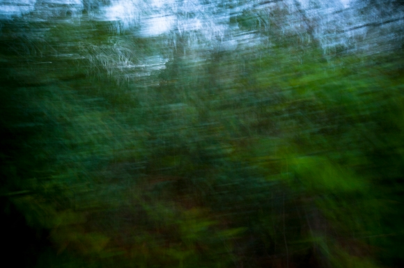 ICM, Camera, Movement, Intentional Camera Movement